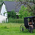 Amish Way Of Life by Frozen in Time Fine Art Photography