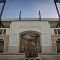 Amon G Carter Stadium At Tcu by Joan Carroll