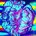 Amplified Flower by Michelle McPhillips