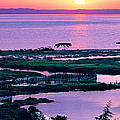 Amvrakikos Gulf by George Rossidis