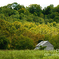 An American Country Scene by Eva Thomas