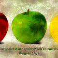 An Apple A Day With Proverbs by Angelina Vick