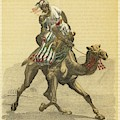 An Arab On His Camel, Riding by Mary Evans Picture Library