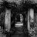 An Archway In The Garden Of Mrs. Carl Tucker by Harry G. Healy