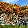 An Autumn Day Painted by Steve Harrington