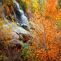 An Autumn Falls by Tara Turner