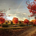 An Autumn Rainbow by Maurice Smith