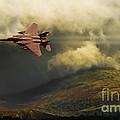 An Eagle Over Cumbria by Meirion Matthias