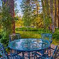 An Early Morning On The Deck At Cottonwood Cottage by Omaste Witkowski