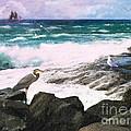 An Egret's View Seascape by Lianne Schneider
