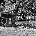 An Empty Park Bench by Georgia Fowler