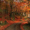 An English Autumn by Sarah Broadmeadow-Thomas