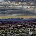 An Evening In The Desert by Michael J Samuels