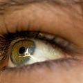 An Eye For Beauty by Paul Mangold