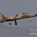 An F-5n Aggressor Aircraft Of The U.s by Timm Ziegenthaler