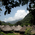An Indigenous Village In The Jungles by Dennis Drenner