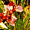 An Iris View by Alice Gipson