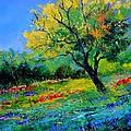 An Oak Amid Flowers In Texas by Pol Ledent