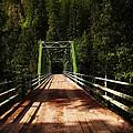 An Old Bridge Crossing The Seleway River  by Jeff Swan
