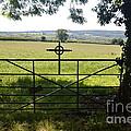 An Old Cemetery Gate by Joe Cashin