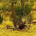 An Old Grass Cutter In Lincoln City New Mexico by Jeff Swan
