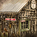 An Old Tool Shed by Randall Branham
