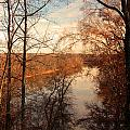 Anacostia River 6457 by Carolyn Stagger Cokley