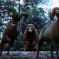 Anaglyph Wild Animals by Ramon Martinez