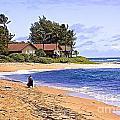 Anahola Beach Kauai by Barbara Zahno