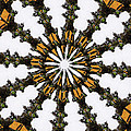 Ananasi Mandala by Lisa Brandel