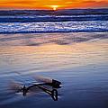Anchor Ocean Beach by Garry Gay