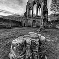 Ancient Abbey by Adrian Evans