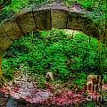 Ancient Arch by Skip Willits