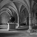 Ancient Cloisters. by Clare Bambers