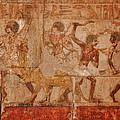 Ancient Egyptian Art by Terry Fleckney