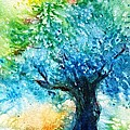 Ancient Olive Tree  Athenas Gift  by Trudi Doyle