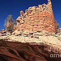 Ancient Pueblo by Adam Jewell