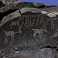 Ancient Symbols by Art Berggreen