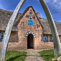 Ancient Whale's Jawbones Gate by Heiko Koehrer-Wagner