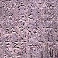 Ancient Writings by Teresa Ruiz