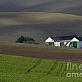 Andalusian Farmland  by Heiko Koehrer-Wagner