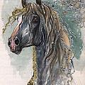 Andalusian Horse 2014 11 11 by Angel Ciesniarska