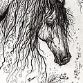 Andalusian Horse Drawing 2 by Angel Ciesniarska