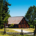 Anderson Valley Barn by Bill Gallagher