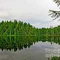 Andrew Lake by Lena Photo Art