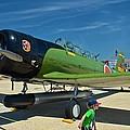 Andrews J B Air Show 5 by Ricardo J Ruiz de Porras