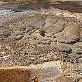Anemone Geyser In Upper Geyser Basin by Fred Stearns