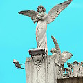 Angel by Anadelia Rodriguez