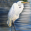 Angel At Sylvia's Pond by Phyllis Beiser