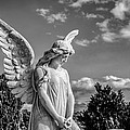Angel At The Heredia General Cemetery by Andres Leon
